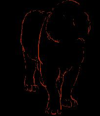 Pathfinder Tiger Mascot
